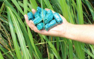 sementes-artificiais-emerald