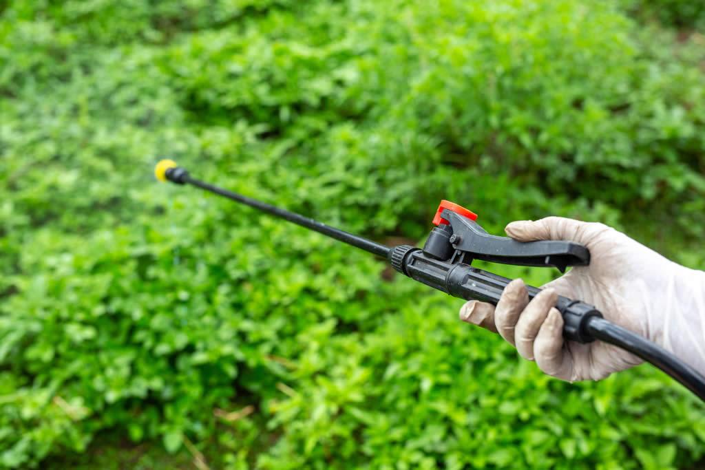 metodos-de-controle-plantas-daninhas